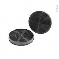 Filtre à charbon - Anti odeurs - EFF62 - Lot de 2 - ELECTROLUX