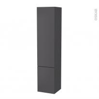 Colonne de salle de bains - 2 portes - GINKO Gris - Côtés décors - Version B - L40 x H182 x P40 cm