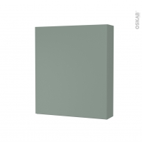 Armoire de toilette - Rangement haut - HELIA Vert - 1 porte - Côtés décors - L60 x H70 x P17 cm