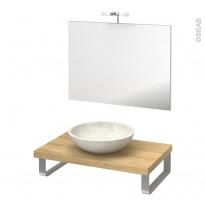 Pack salle de bains PMR - Vasque à poser Ricia blanc - Plan de toilette Hosta - Miroir et éclairage - L80 x P50
